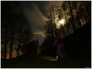 MTB Night Ride